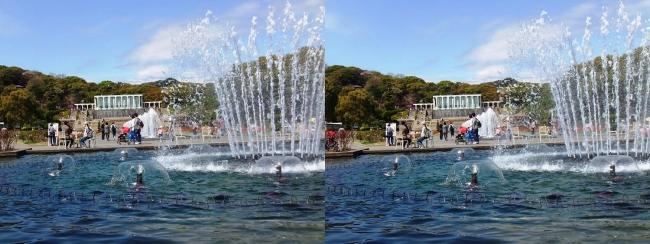 須磨離宮公園 噴水広場 大噴水②(平行法)