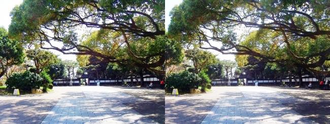 須磨離宮公園 中門広場(交差法)