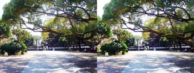 須磨離宮公園 中門広場(平行法)