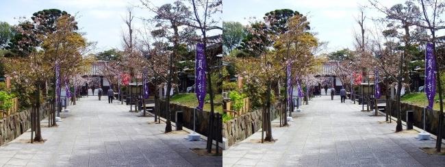 須磨寺 参道②(平行法)