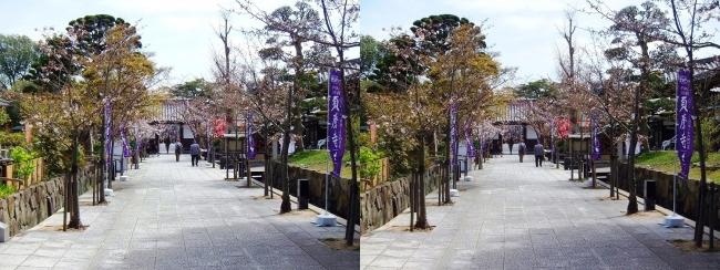 須磨寺 参道②(交差法)