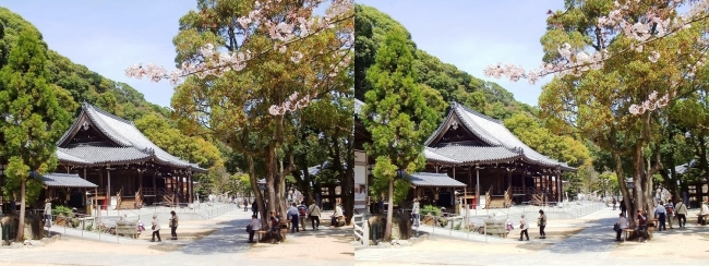 須磨寺 境内②(平行法)