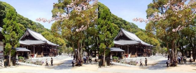 須磨寺 境内②(交差法)