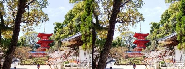 須磨寺 境内①(平行法)