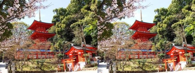 須磨寺 三重塔・出世稲荷(平行法)