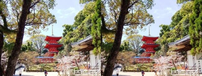 須磨寺 境内①(交差法)
