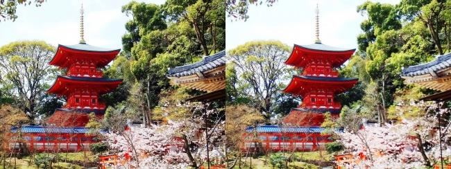 須磨寺 三重塔(平行法)