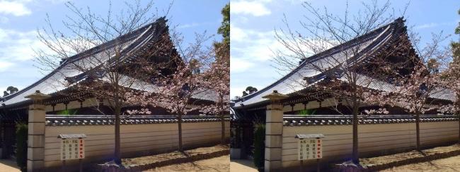 須磨寺 本坊・書院(平行法)