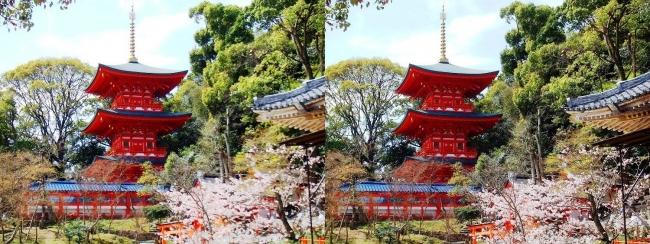 須磨寺 三重塔(交差法)