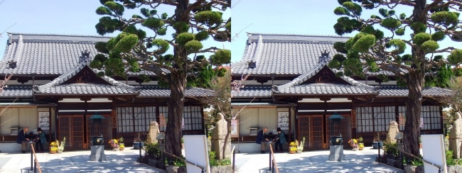 須磨寺 蓮生院(平行法)