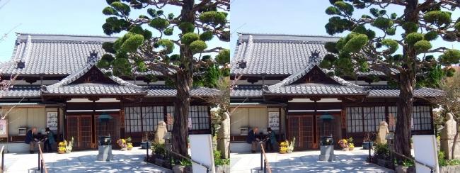 須磨寺 蓮生院(交差法)