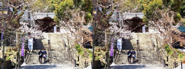 須磨寺 唐門①(交差法)