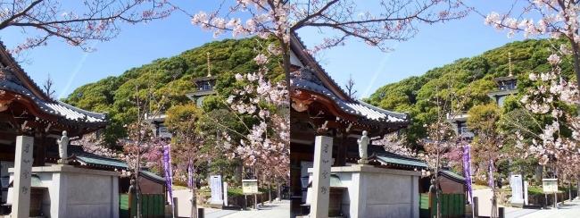 須磨寺 桜寿院 寺務所(平行法)