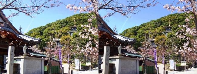 須磨寺 桜寿院 寺務所(交差法)