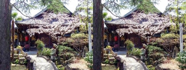 須磨寺 正覚院(交差法)