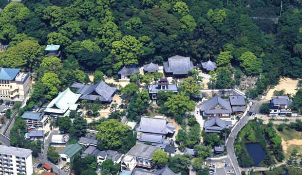 須磨寺空撮