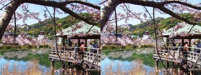 須磨寺公園④(平行法)
