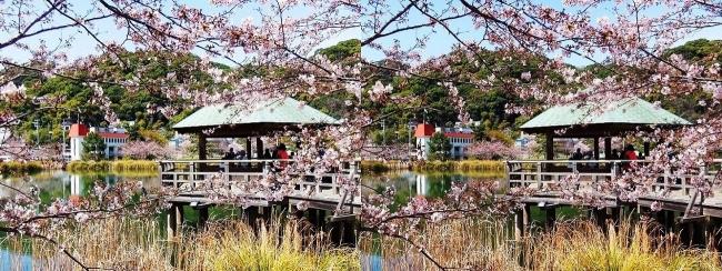須磨寺公園③(交差法)