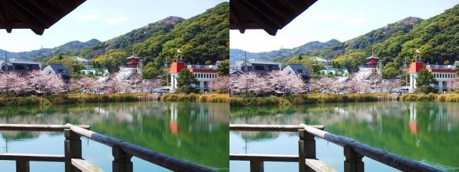 須磨寺公園②(平行法)