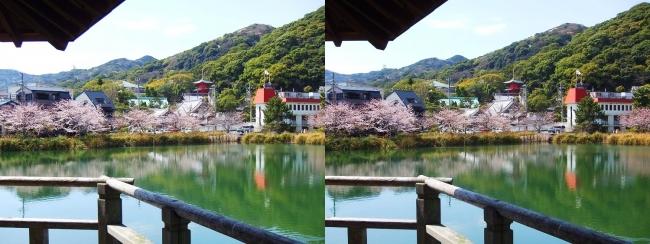 須磨寺公園②(交差法)
