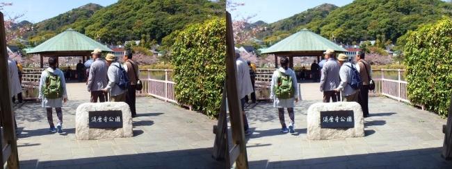 須磨寺公園①(平行法)
