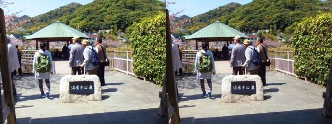 須磨寺公園①(交差法)