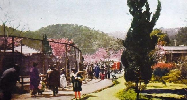 須磨寺遊園地②