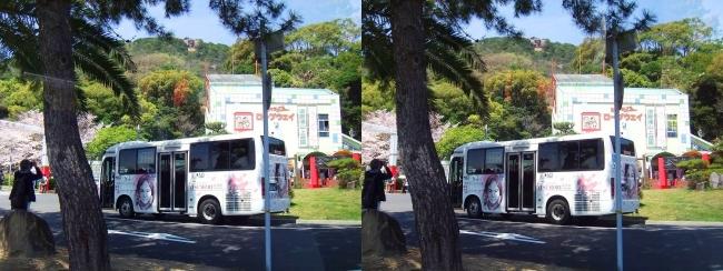 須磨さくらめぐりバス(交差法)