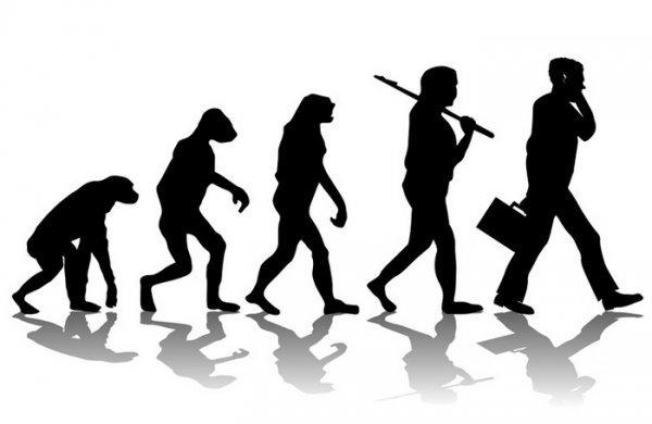 直立二足歩行への進化