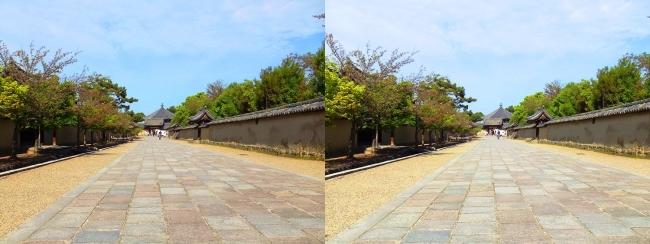法隆寺 西院伽藍と東院伽藍を結ぶ石畳道②(平行法)