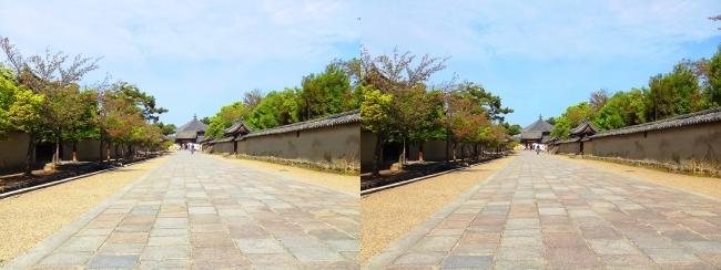 法隆寺 西院伽藍と東院伽藍を結ぶ石畳道②(交差法)