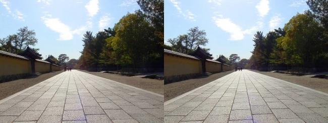 法隆寺 西院伽藍と東院伽藍を結ぶ石畳道①(平行法)
