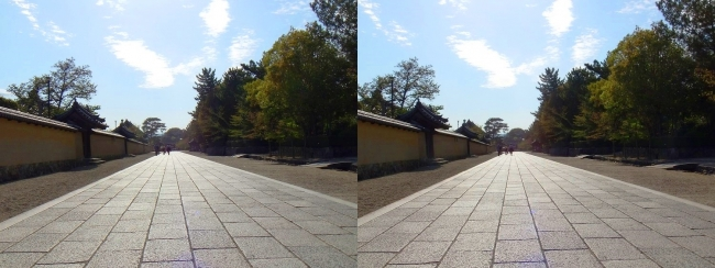 法隆寺 西院伽藍と東院伽藍を結ぶ石畳道①(交差法)