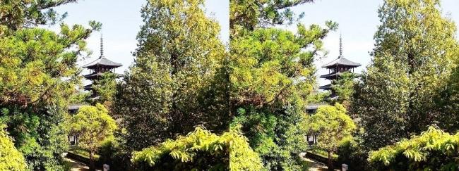 法隆寺 西円堂からの五重塔(平行法)