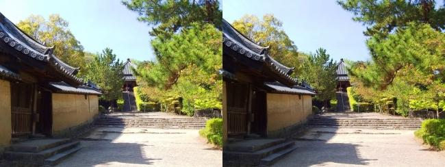 法隆寺 西円堂遠景②(交差法)