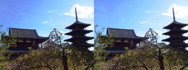 法隆寺 五重塔と金堂①(平行法)