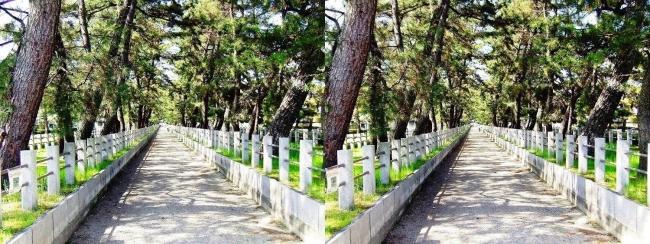 法隆寺 参道①(交差法)