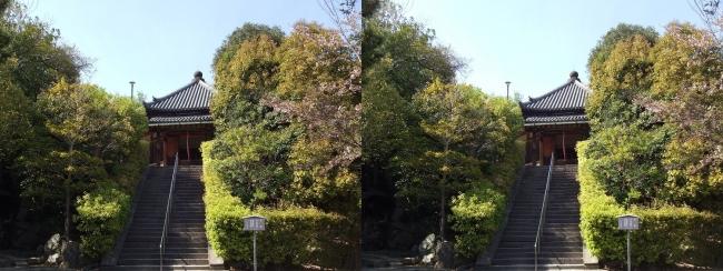 法隆寺 西円堂遠景③(平行法)