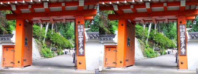 三室戸寺 山門(平行法)