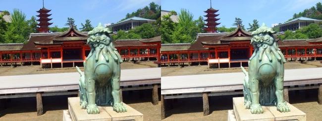 嚴島神社 狛犬 吽形♀(平行法)