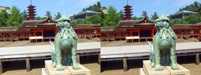 嚴島神社 狛犬 吽形♀(交差法)