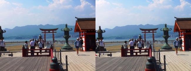 嚴島神社 高舞台 平舞台 大鳥居(平行法)