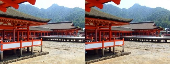 嚴島神社 東回廊①(交差法)