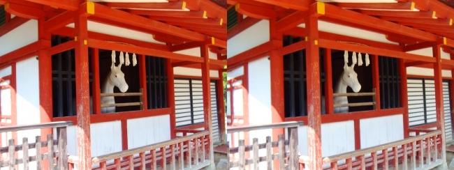 嚴島神社 神馬の馬小屋(平行法)