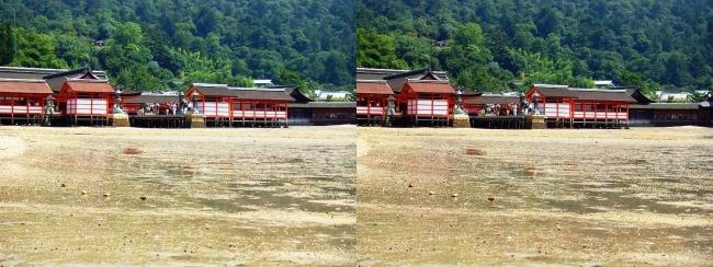 御笠浜 嚴島神社②(交差法)