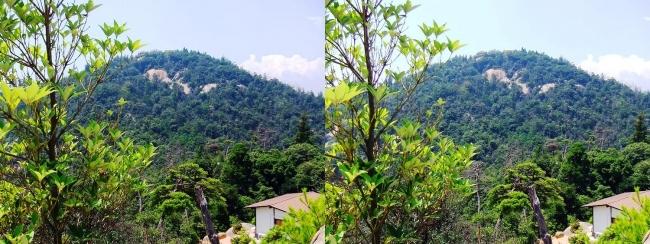 宮島ロープウェー 獅子岩展望台からの弥山(平行法)