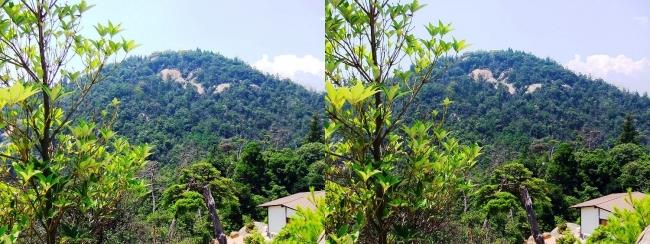 宮島ロープウェー 獅子岩展望台からの弥山(交差法)