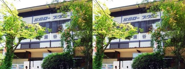 宮島ロープウェー 紅葉谷駅③(交差法)
