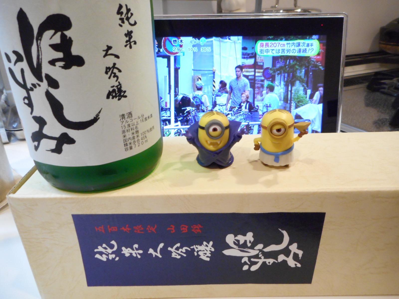 hoshiizumi_jundai_yamada45_27by5.jpg