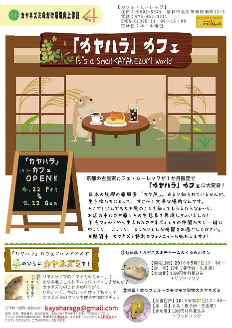 kayachirashi16.jpg